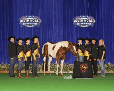 APHA YWG Reserve World Champion 2014